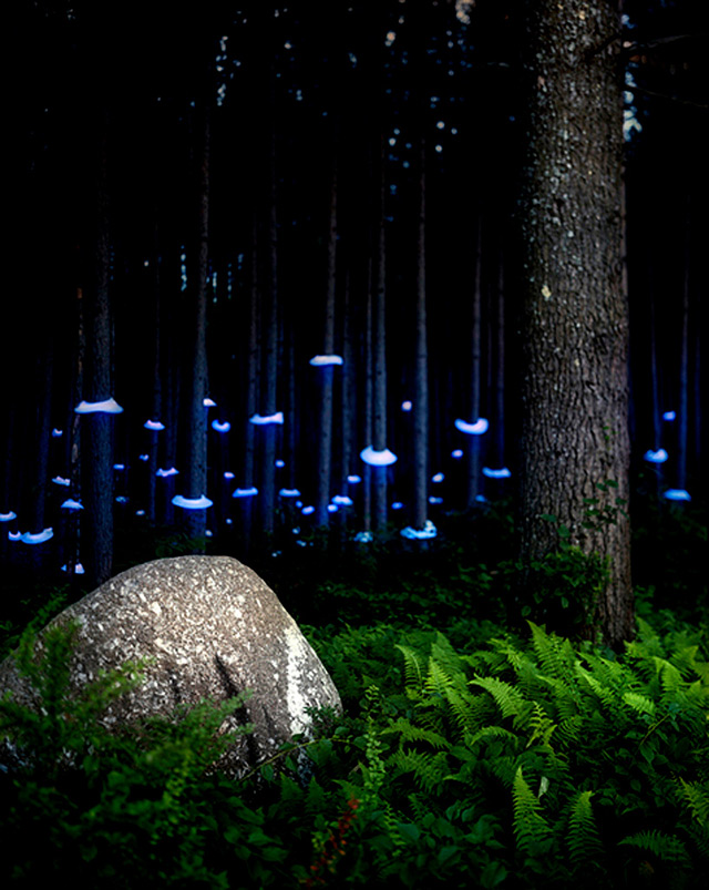 Lights In The Landscape New Trend Land Art And